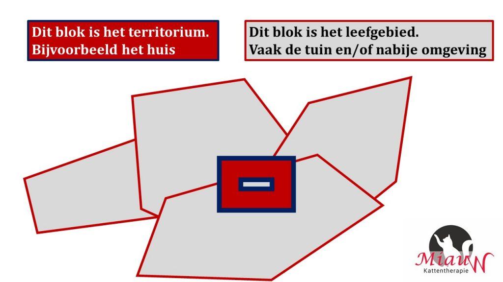 territorium-leefgebied-buitenkatten-1024x576.jpg